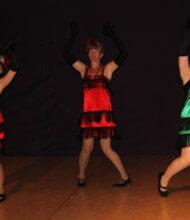 Toggenburger-Tanznacht Tanzshow 6